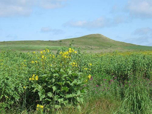 Spirit Mound, South Dakota, a hill that the Indians believe vibrates with spiritual energy.