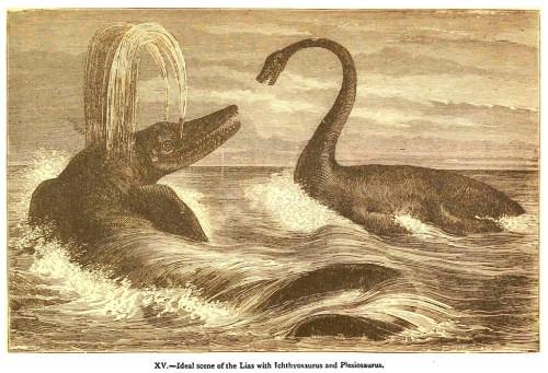 Plesiosaur battling Icthyosaurus