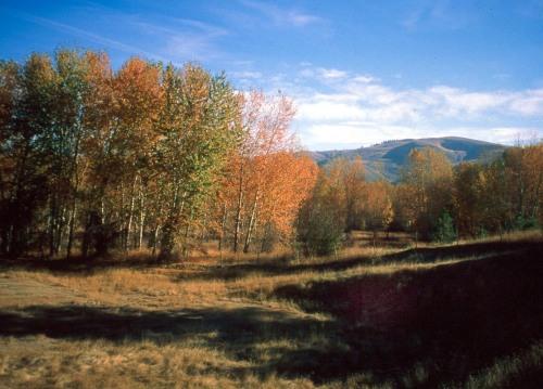 Traveler's Rest State Park, Montana