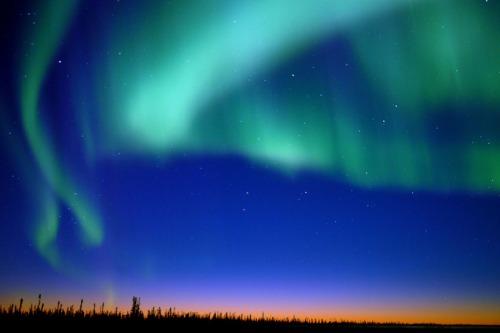 Clarks Northern Lights